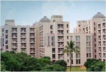 IBS Gurgaon